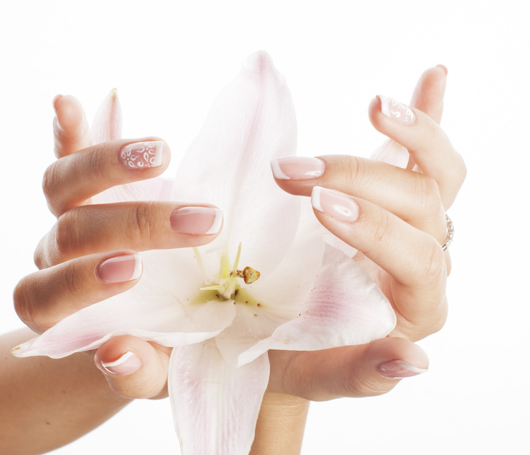 beauty delicate hands with manicure holding flower lily